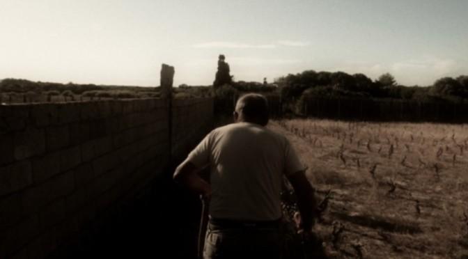 Cinque cortometraggi sull'amore – TFF 2015