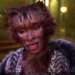 474794-cats-avec-taylor-swift-la-bande-annonce